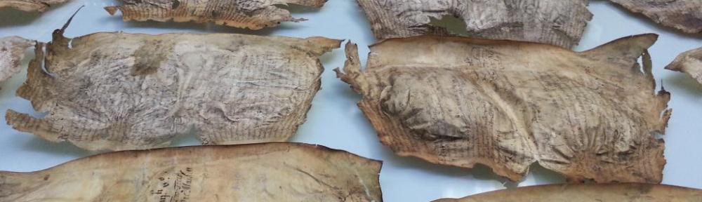 Great Parchment Book membranes